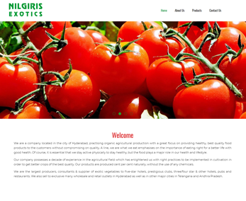 Website design for Organic Food Supplier